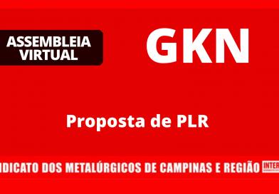 RESULTADO – GKN: PLR